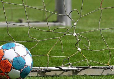 Die Saison in der Regionalliga soll am 14. August beginnen, in den Klassen darunter soll es eine Woche später losgehen. Foto: imago images/Zink/Sportfoto Zink / Wolfgang Zink via www.imago-images.de
